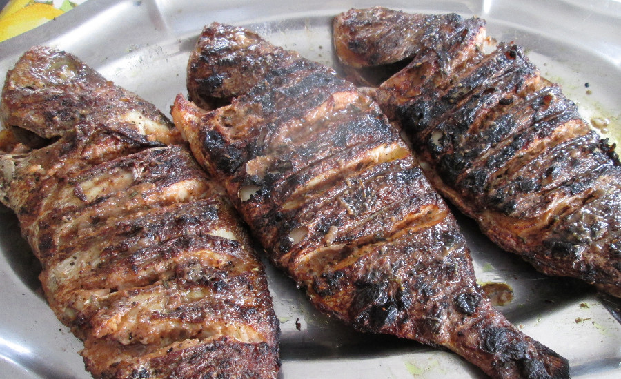Thiebou diola le poisson grill de casamance - Grille des salaires au senegal ...